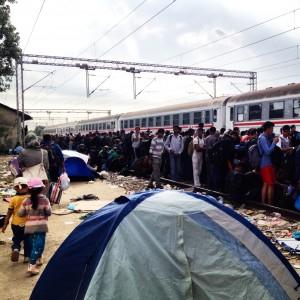 folla treno